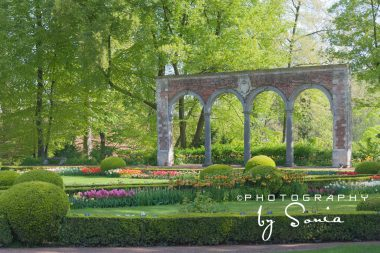 floralia-brussels-3_26709114541_o