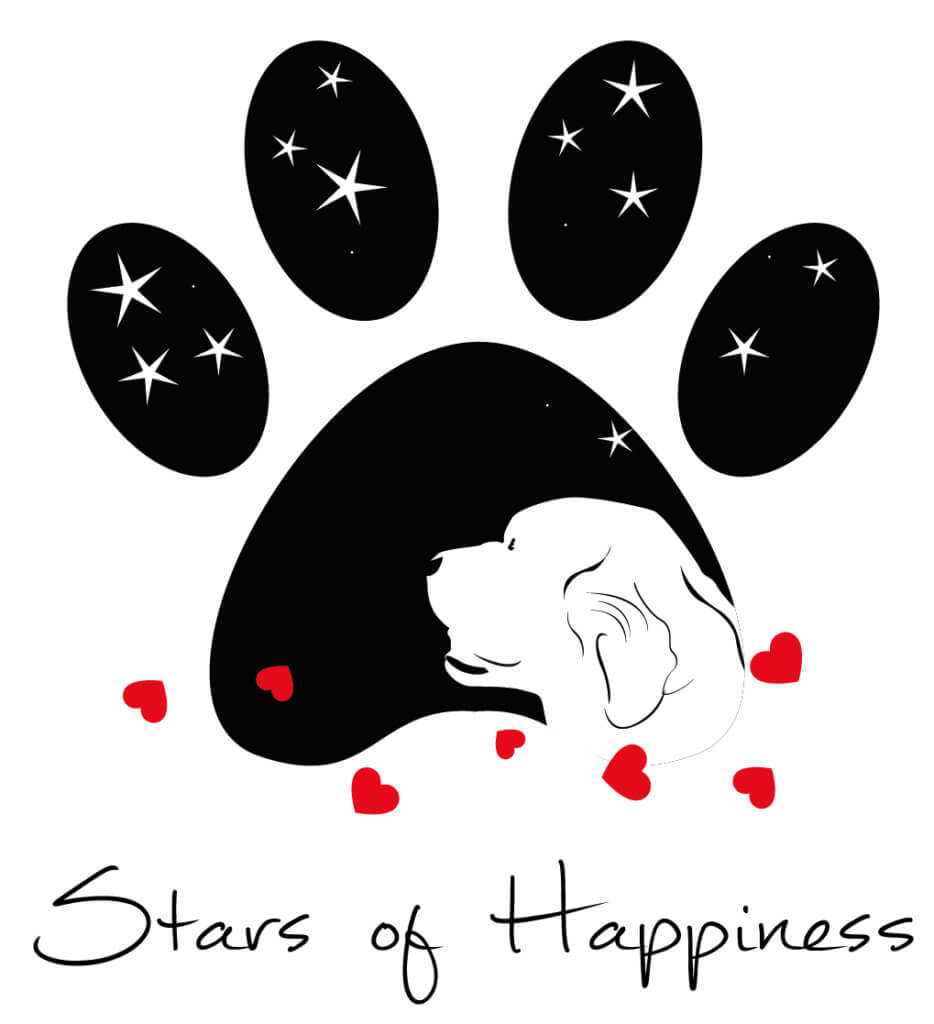 Stars Of Happiness